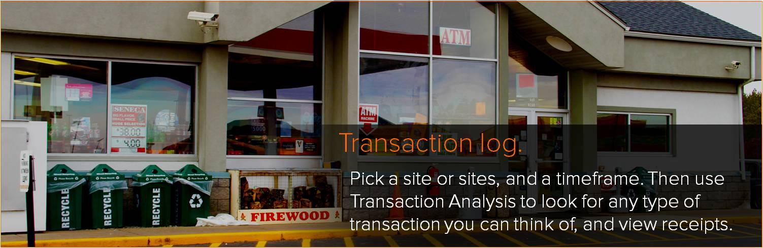 transaction analysis transaction log